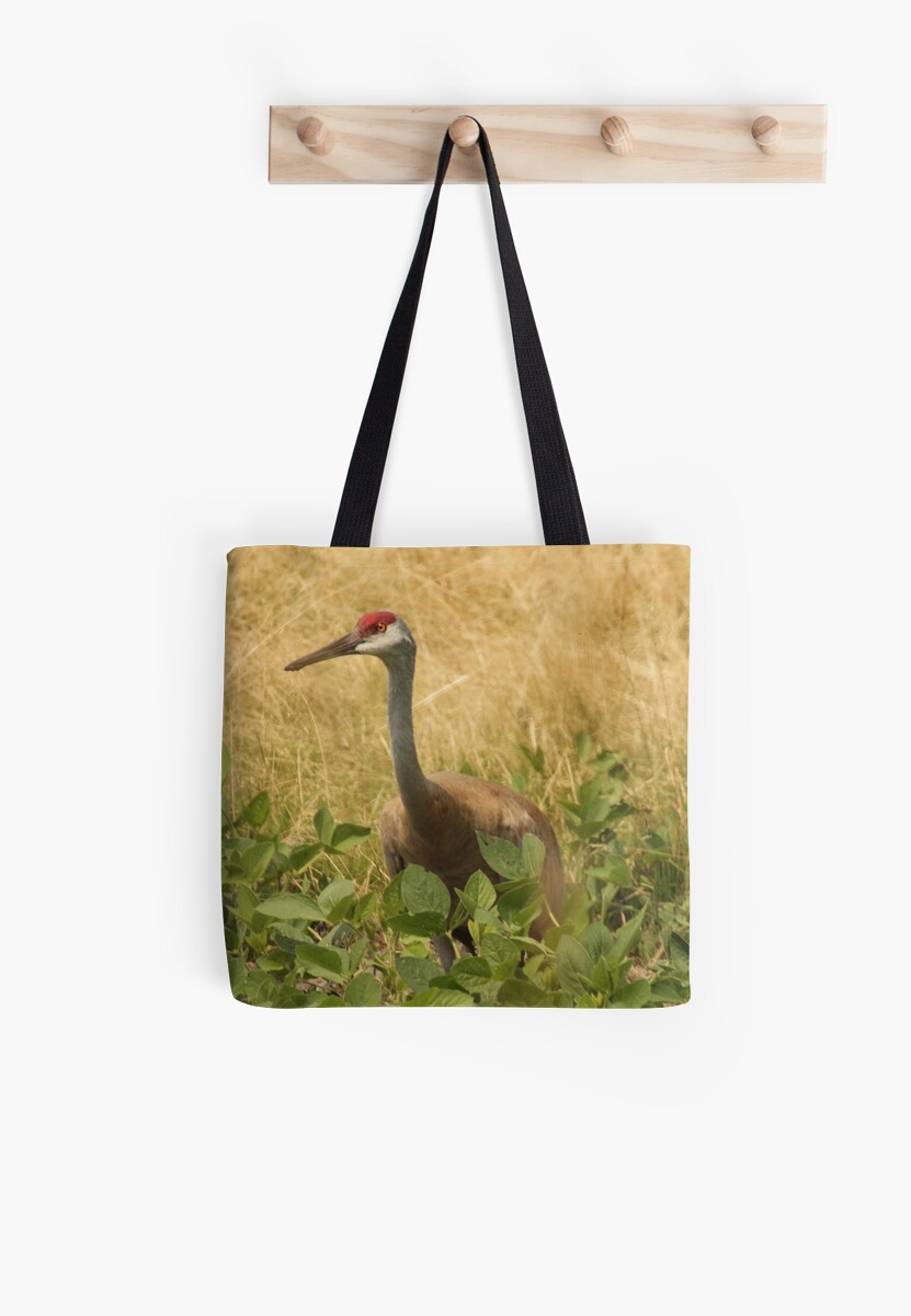 Sandhill Crane Skirted in Green Leaf by Thomas Murphy