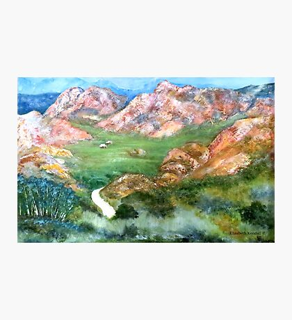 Green valley of the Klein Karoo Photographic Print