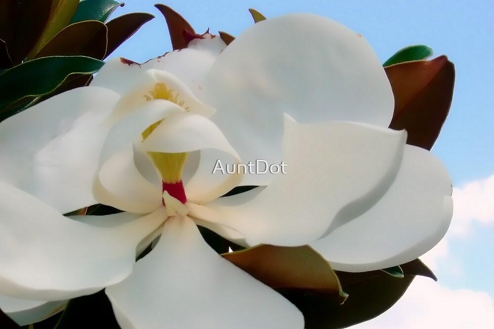 Magnolia Blossom by AuntDot