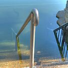 Stairs to the Deep, Lake Eacham, North Queensland by Adrian Paul