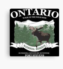Ontario moose Canvas Print