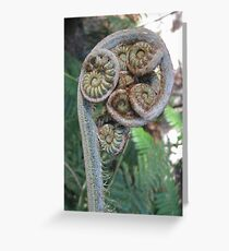 Natures perfect spiral Greeting Card