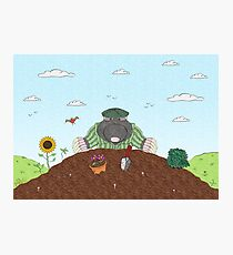 Country Mole Photographic Print