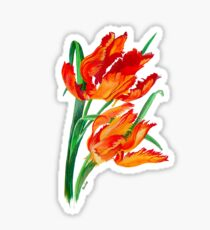 Bright Red Flamboyant Parrot Tulips Sticker