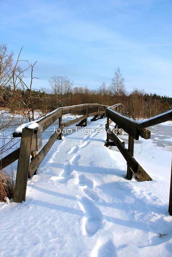 The Herrestadsjön bridge III by João Figueiredo
