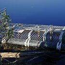 Crocodile trap by georgieboy98