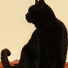 Side View Silhouette of A Black Cat Sitting On A Roof by taiche