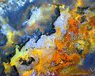 The Island Burns by Stephanie Bateman-Graham