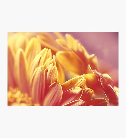 Gently Burning Photographic Print