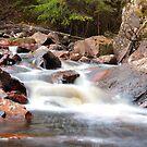 Töllstorps's waterways by João Figueiredo