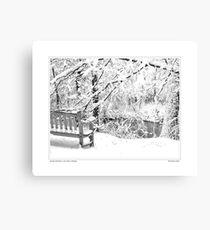 Nichols Arboretum #4 Canvas Print
