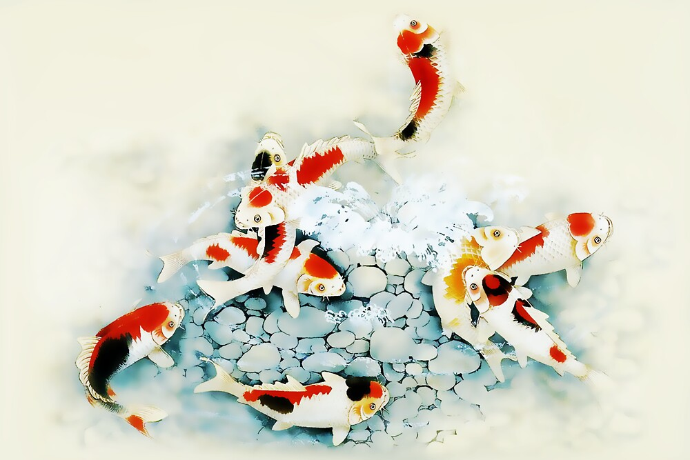 Image gallery koi carp artist for Japanese koi carp paintings