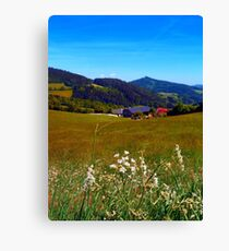 Wallflowers with no wall Canvas Print