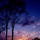 Sunset In Frankland by Eve Parry