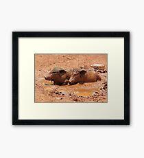 Mud Bath Framed Print