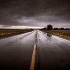 Driving Rain by Bob Larson