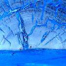 Blue Sun by Kathie Nichols
