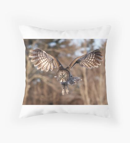 Great Grey Owl swoops down Throw Pillow