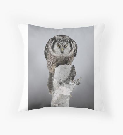 Hawk on log portrait - Northern Hawk Owl Throw Pillow