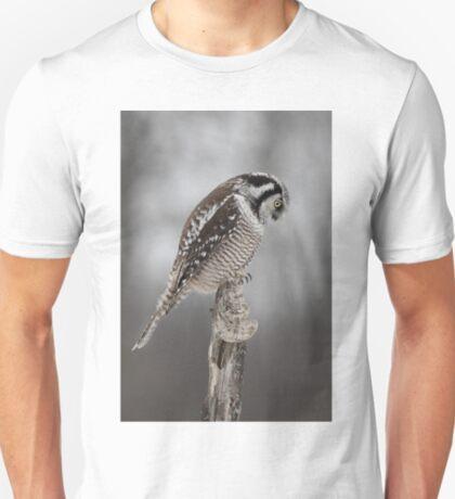 Northern Hawk Owl checks his claws T-Shirt