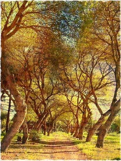 if trees could speak If trees could speak shankar tells us what his works will highlight the importance of the flora in our society artist, photographer and animation trainer s shankar.