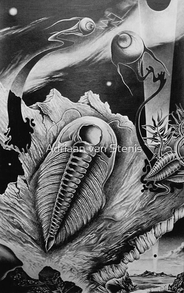 Fossillized Dream Image by Adriaan van Stenis