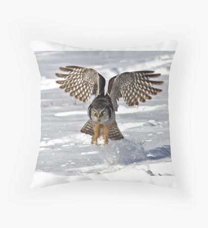 Snow Blast - Northern Hawk owl Throw Pillow