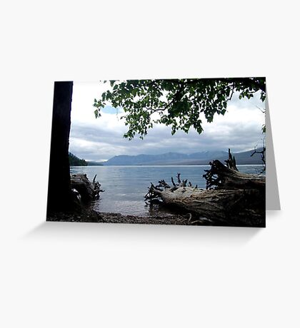 TREES WITH TOES, LAKE MC DONALD, GLACIER NATIONAL PARK Greeting Card