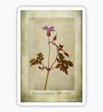 Geranium robertianum Sticker