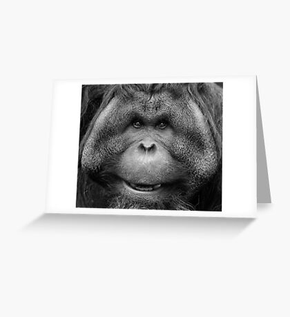 Chubby Chops Greeting Card