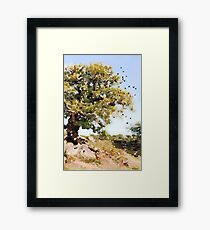 Charnwood Forest Watercolour Framed Print