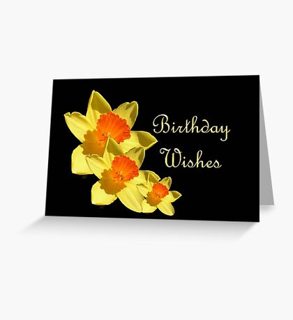 Daffodils Isolated On Black Birthday Wishes Greeting Card