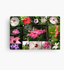Say Hi to Hibiscus Canvas Print