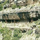 Black Walnut Canyon, Arizona by steveschwarz