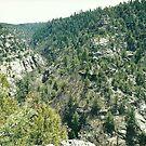 View from Black Walnut Canyon by steveschwarz