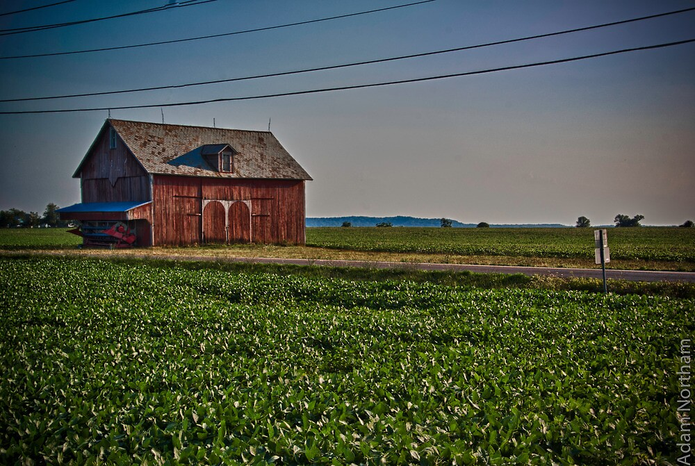 The Old Barn 2 by anorth7