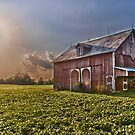 The Old Barn 5 by Adam Northam