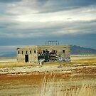 Salt Flats, Utah by steveschwarz