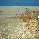 Salt Flat Fence,Utah by steveschwarz