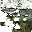 Snowy Creek 2, Utah by steveschwarz