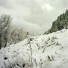 Wasatch in Snow by steveschwarz