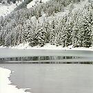 Wasatch Mountain Lake by steveschwarz