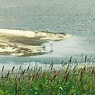 Assateaque Island, Maryland by steveschwarz
