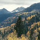 Colorado Beauty by steveschwarz