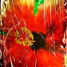 Hibiscus Flower by Anne  McGinn