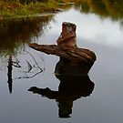 Nature's Art,  Stump Statue by MaeBelle