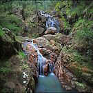 Wombeyan Falls by Peter Hill