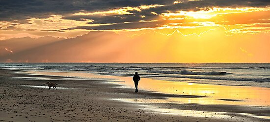 Morning Walk by Annette Blattman