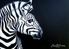 Zebra on Black by Cherie Roe Dirksen