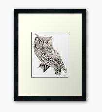 Eastern Screech Owl (Megascops asio), 2012, Pencil Framed Print